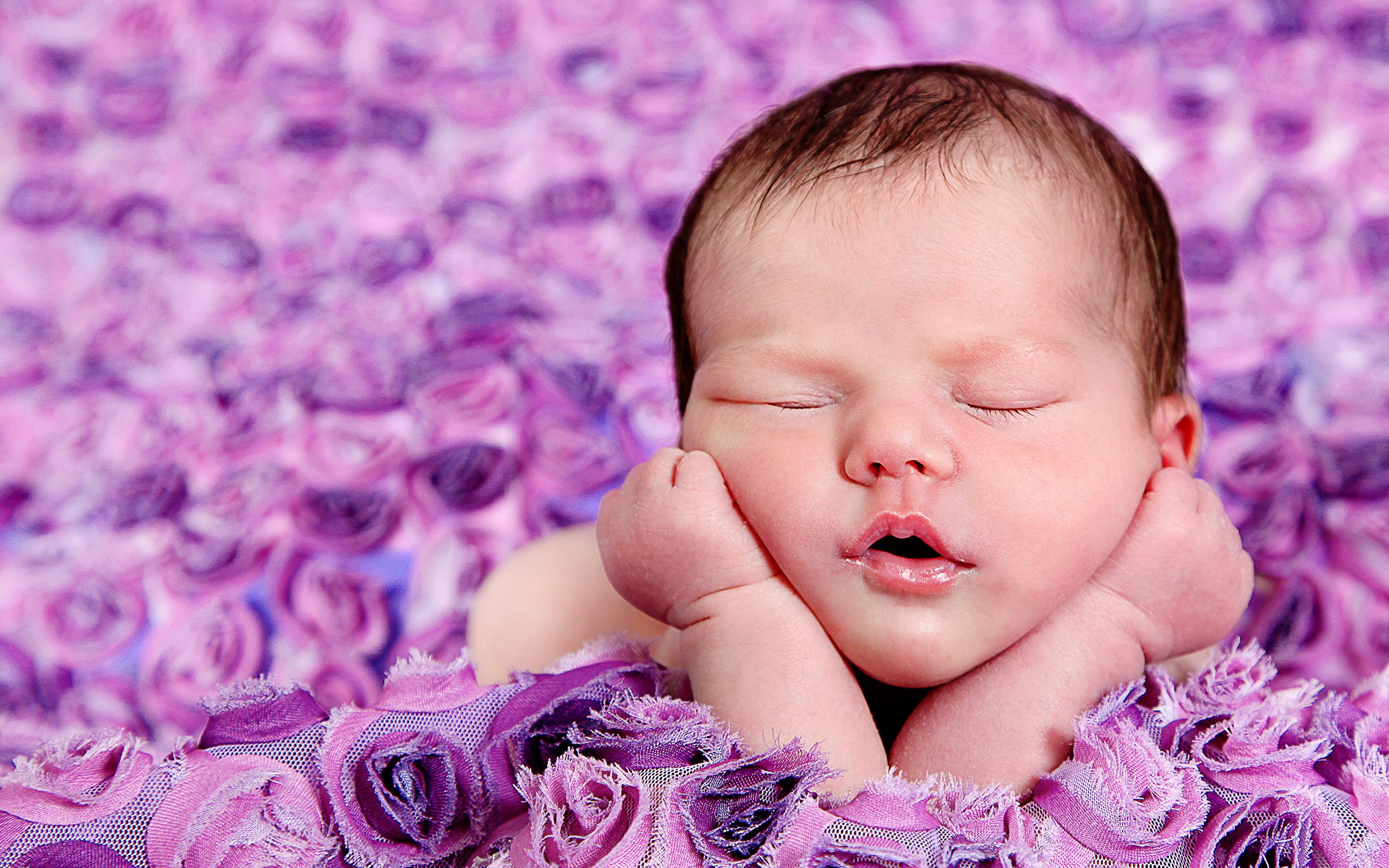 4k Sleeping Babies Desktop Wallpaper For Pc - Funny Newborn Baby Girl , HD Wallpaper & Backgrounds