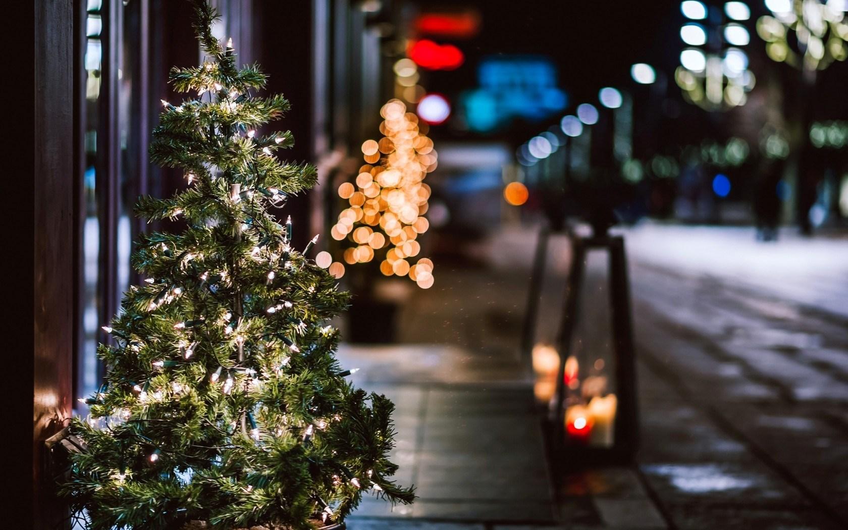 Christmas Tree Garland Lights City Street Night Winter Christmas Tree Wallpaper Ipad 1239101 Hd Wallpaper Backgrounds Download