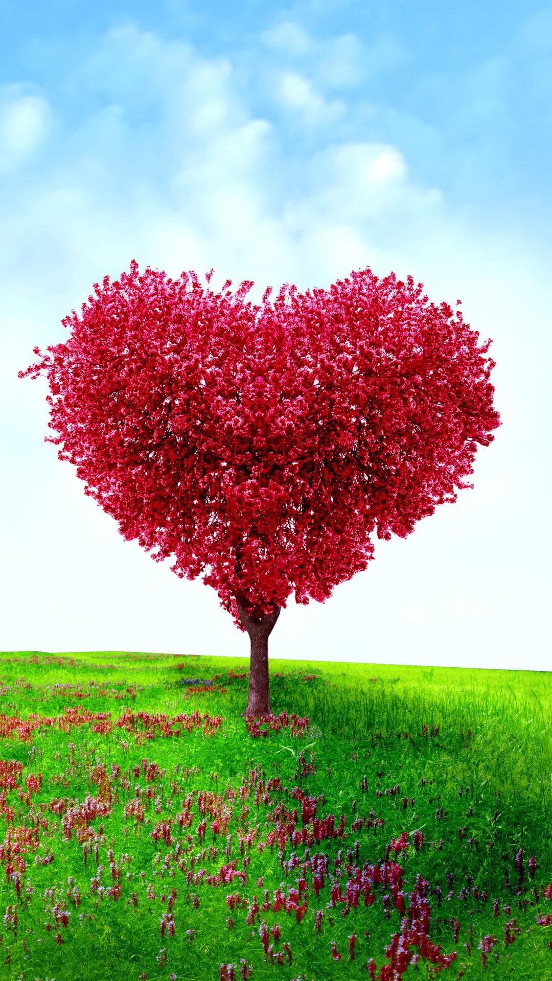 Selecionamos As Mais Lindas Mensagens De Amor Frases