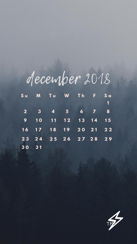 Tmt Insta Stories - January 2019 Calendar , HD Wallpaper & Backgrounds