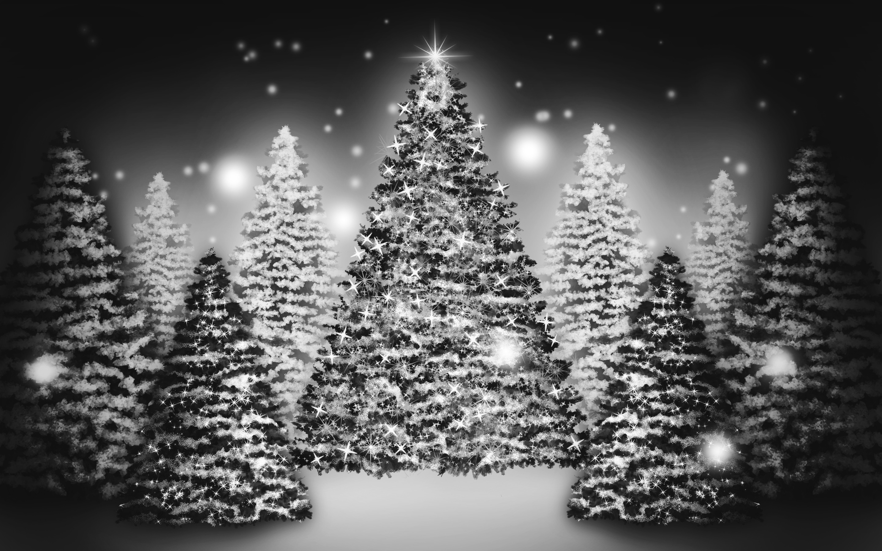 White Christmas Tree Wallpapers Christmas Day 1291953 Hd Wallpaper Backgrounds Download