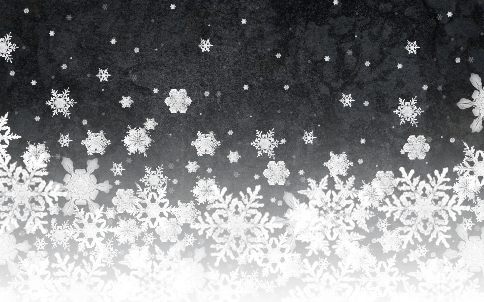 Black And White Snow Snow Wallpaper Black And White 1292210
