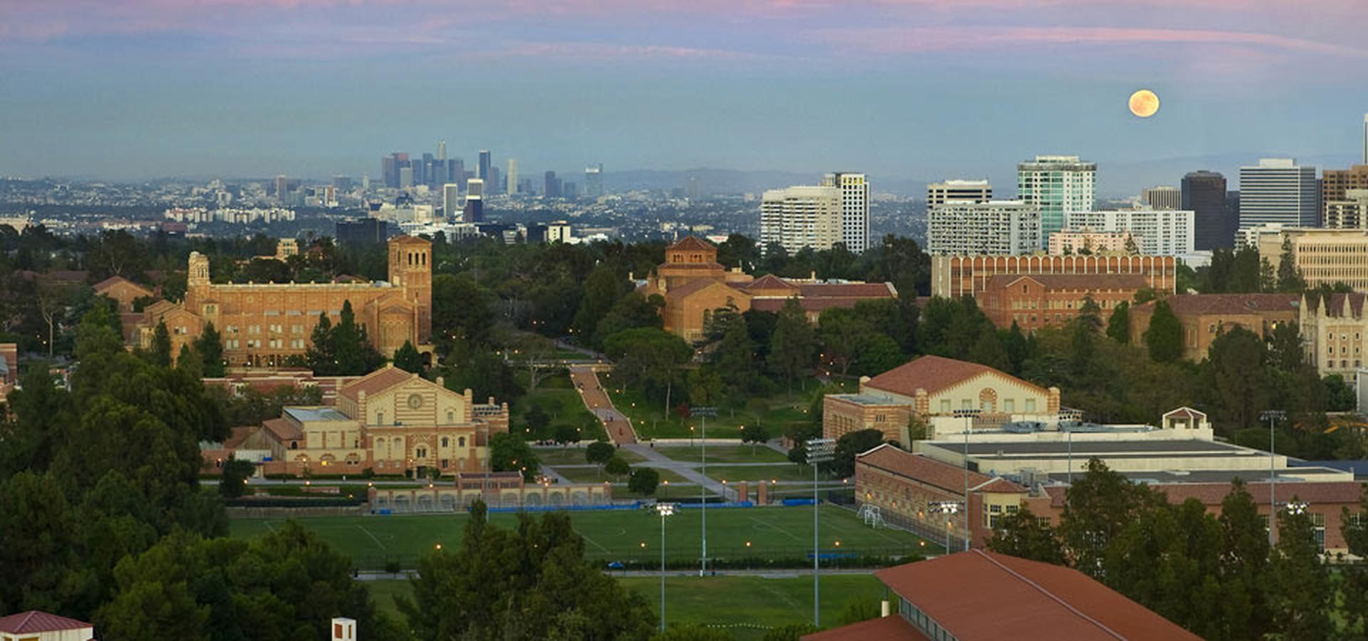 University Of California, Los Angeles Hd Wallpaper - Ucla Downtown Los Angeles , HD Wallpaper & Backgrounds
