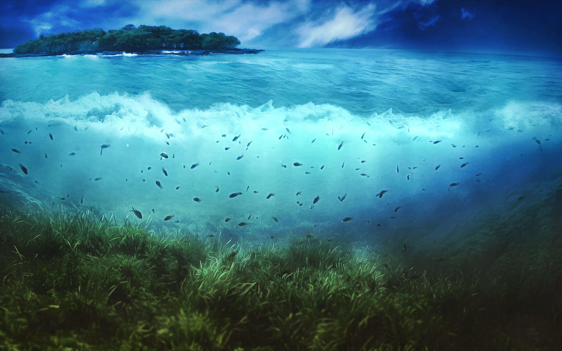 World Of Sea Wallpaper Sea Hd 132301 Hd Wallpaper