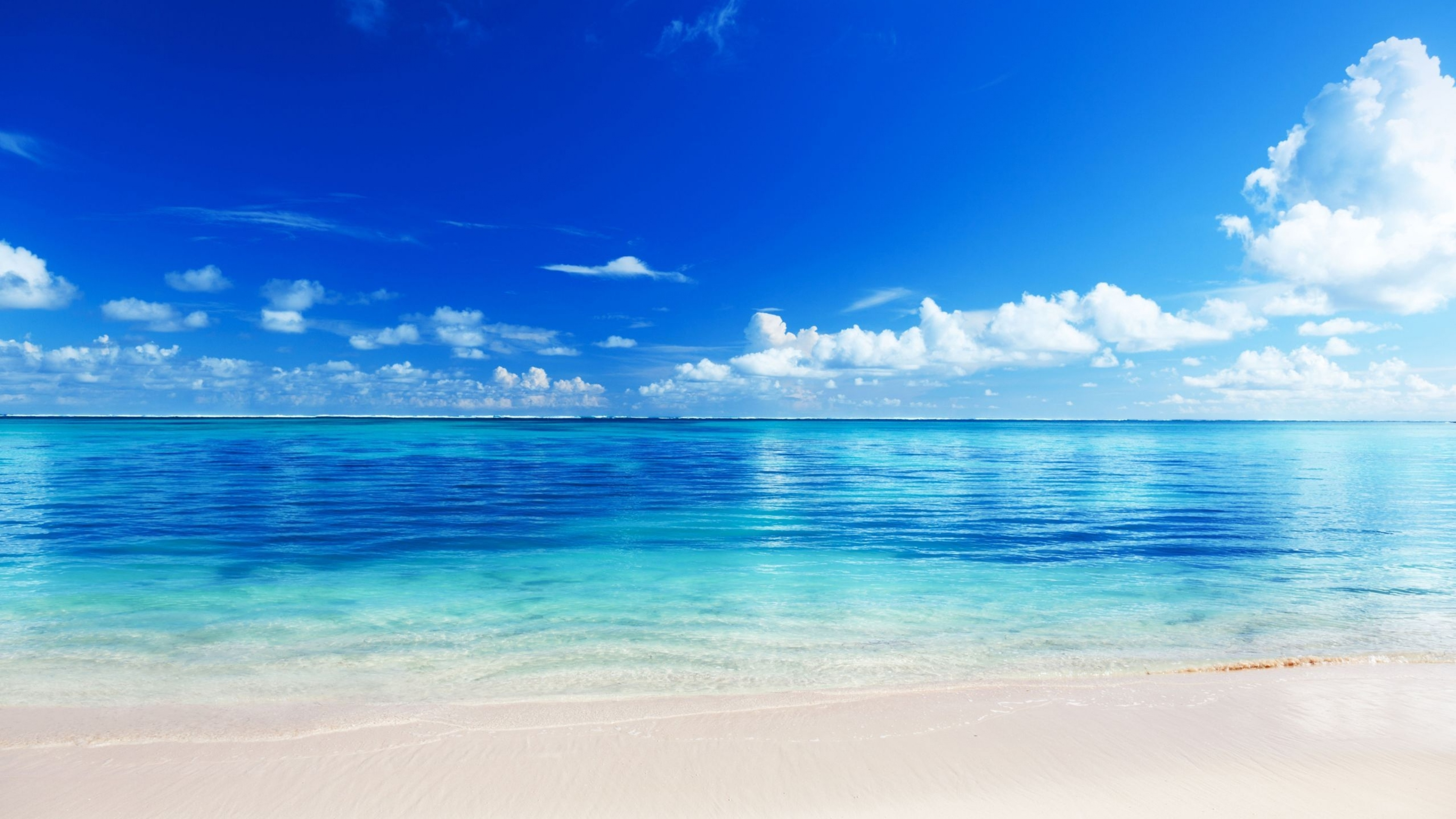 Download In Full Size Beach Background 132366 Hd