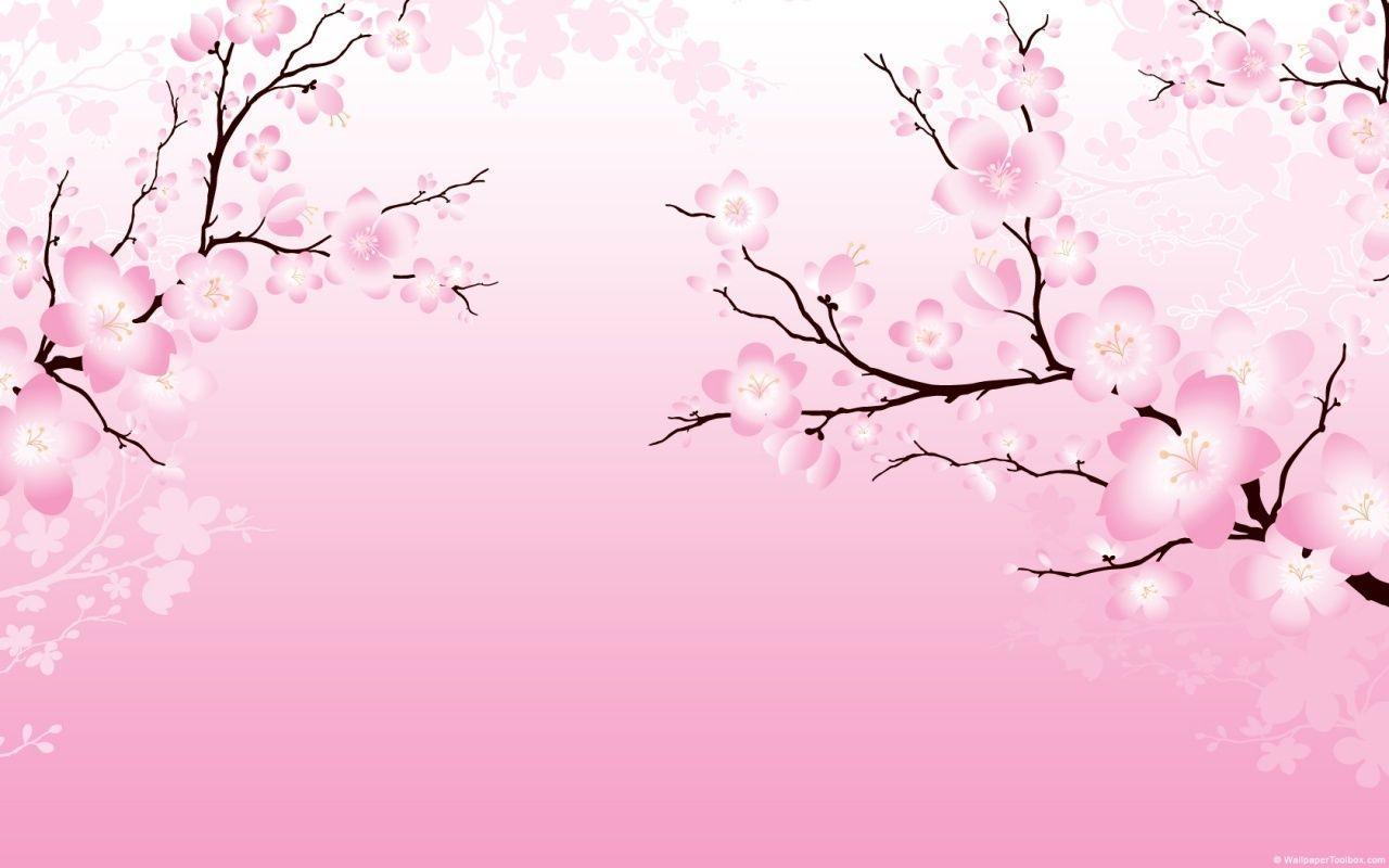 Cherry Blossom Sakura Background , HD Wallpaper & Backgrounds