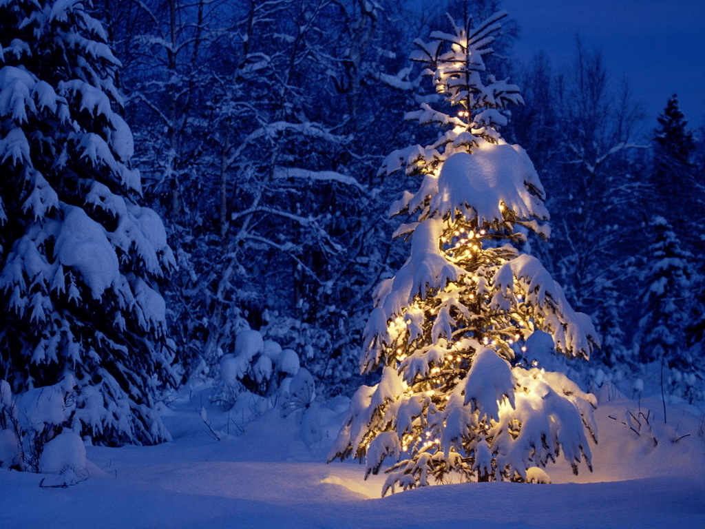Winter Wallpapers Christmas Snow Landscapes 136638 Hd Wallpaper Backgrounds Download