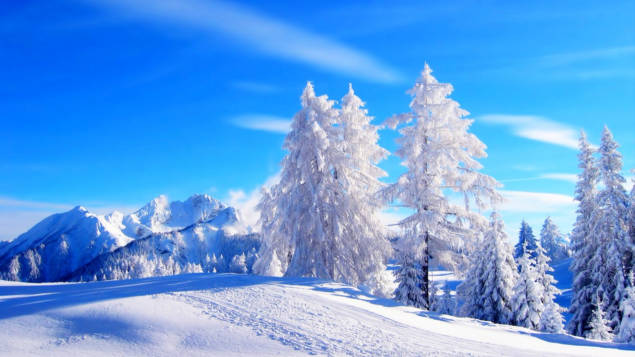 Nature Winter Wallpaper High Resolution Winter Backgrounds 136856 Hd Wallpaper Backgrounds Download