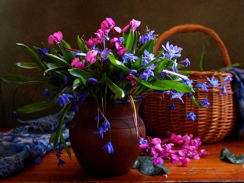 Free Images Of Beautiful Flowers , HD Wallpaper & Backgrounds