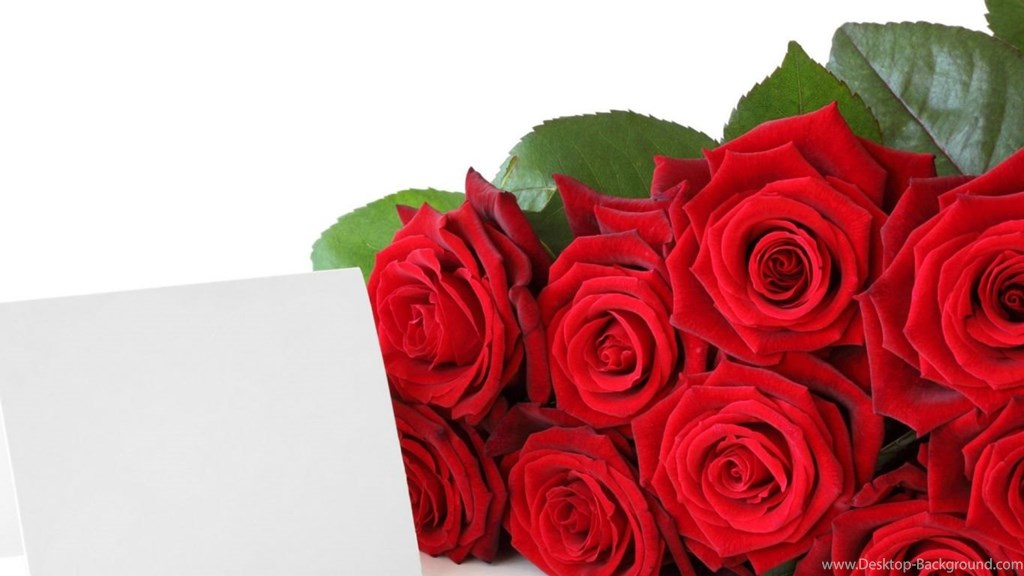 Red Roses For Free Download Beautiful Rose Flower Wallpapers - Red Roses Photos Download , HD Wallpaper & Backgrounds