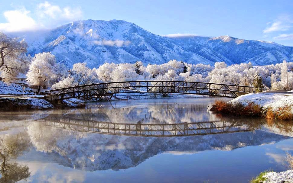 Nature Winter Snow Frost River Bridge High Resolution