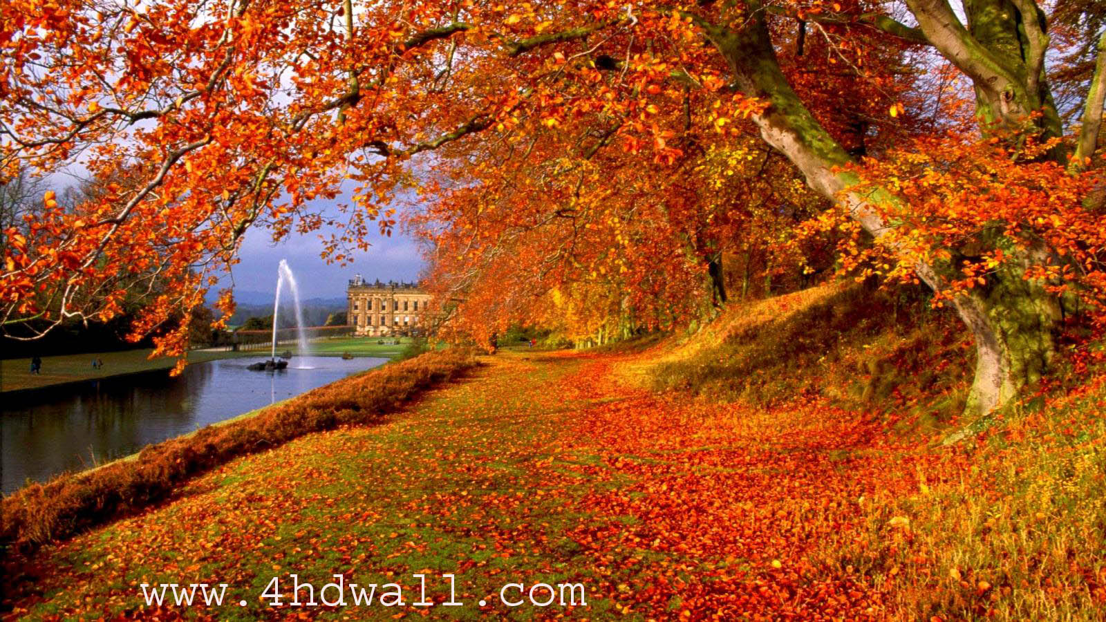 Fall - Autumn Hd 1600 X 900 , HD Wallpaper & Backgrounds