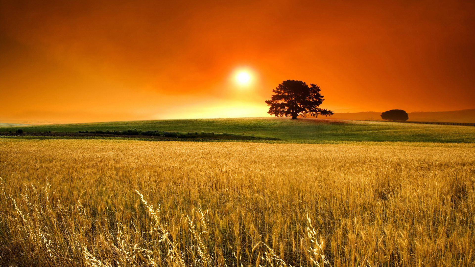 1080p My Yearly Late Summer Early Autumn Wallpaper Sunset