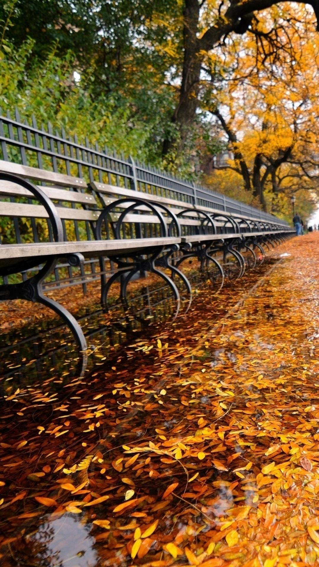 Fall Iphone Wallpaper 254590 Autumn In New York Desktop