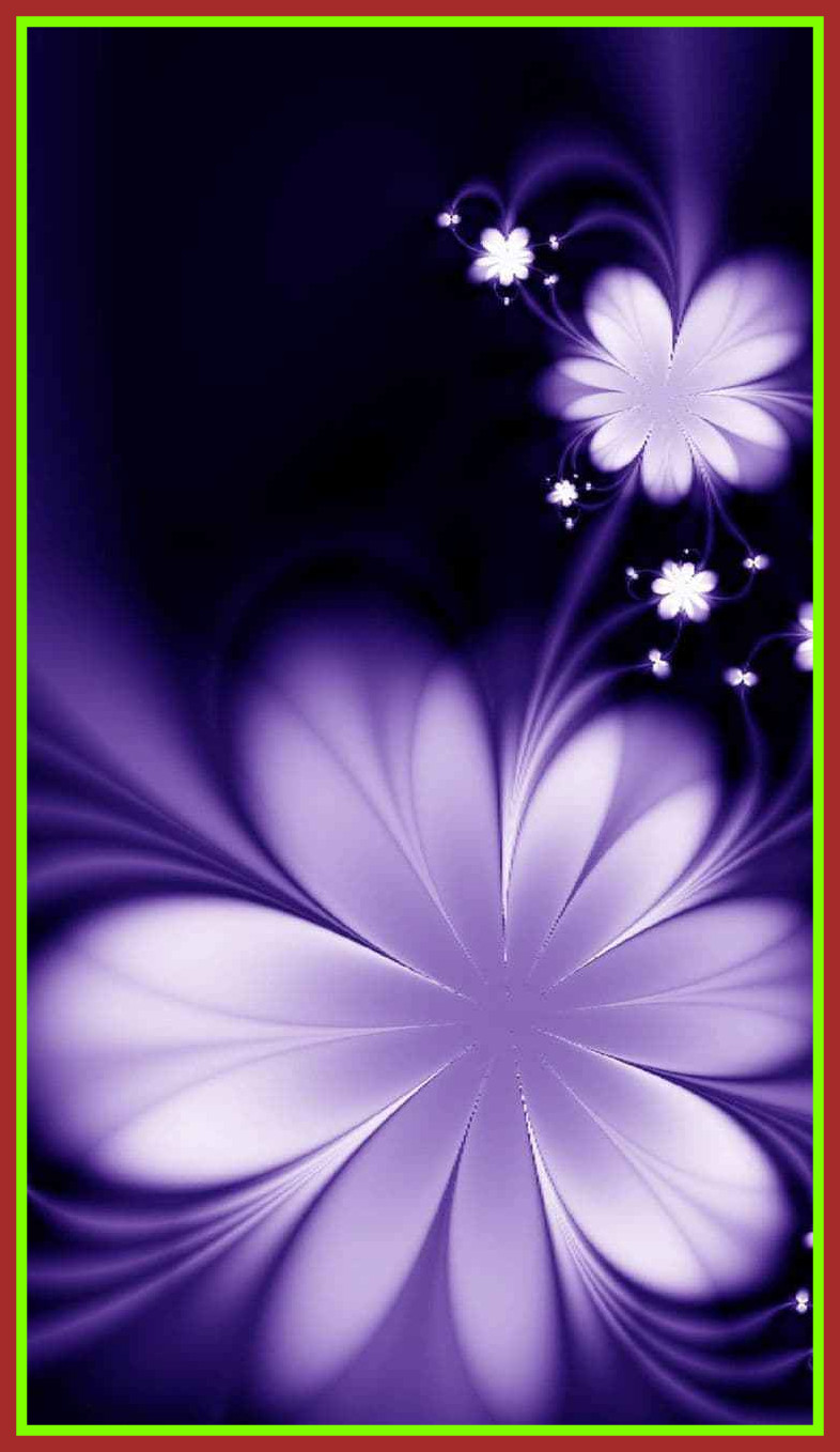 Appealing Cool Full Hd For Android Mobile Of Flower Amazing