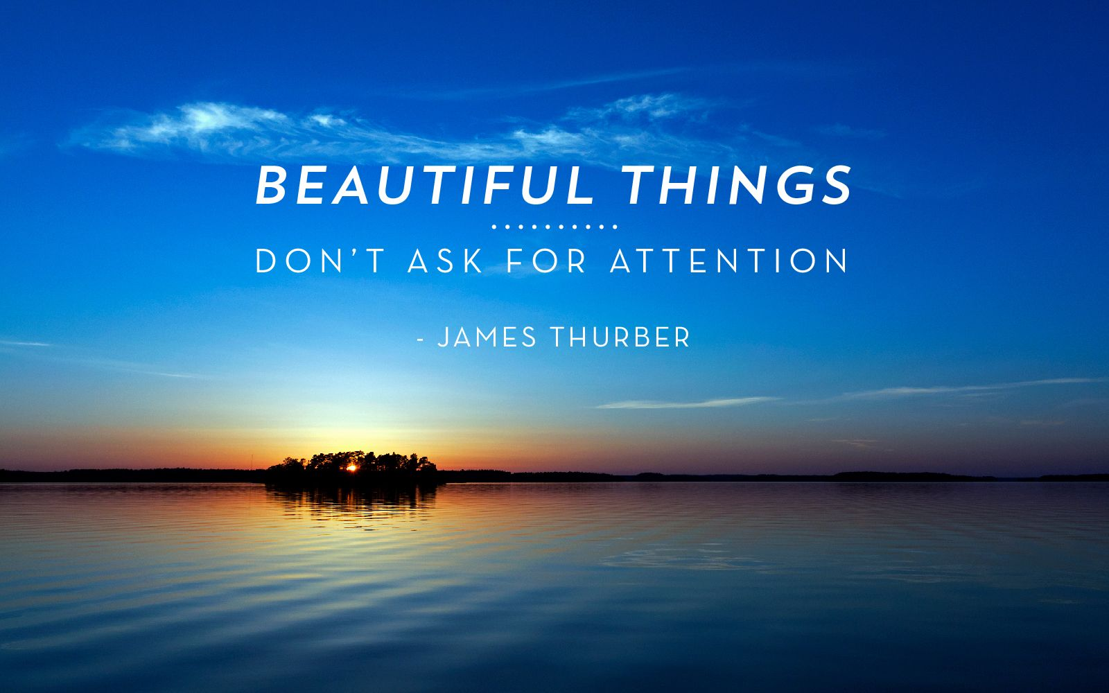 beautiful Things Don\'t Ask For Attention\