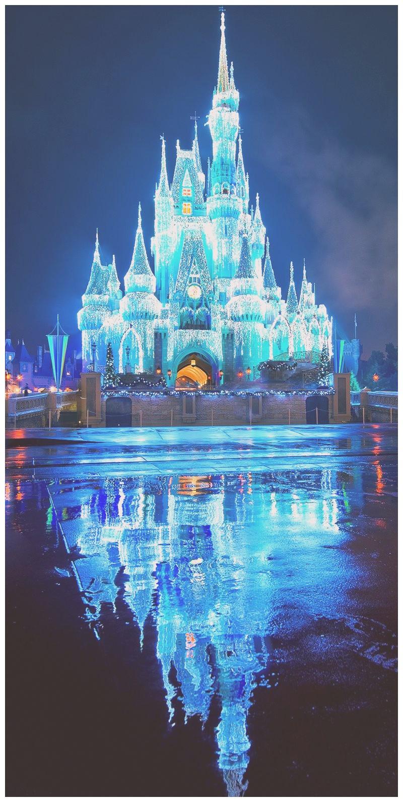 Disney World Iphone Wallpaper Hd Disney World Cinderella Castle 1341571 Hd Wallpaper Backgrounds Download