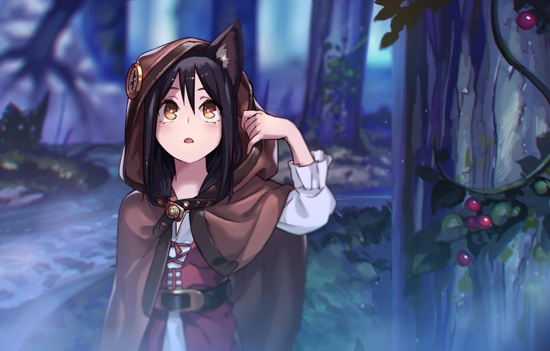 Wallpaper Forest Girl Dark Anime Art Neko