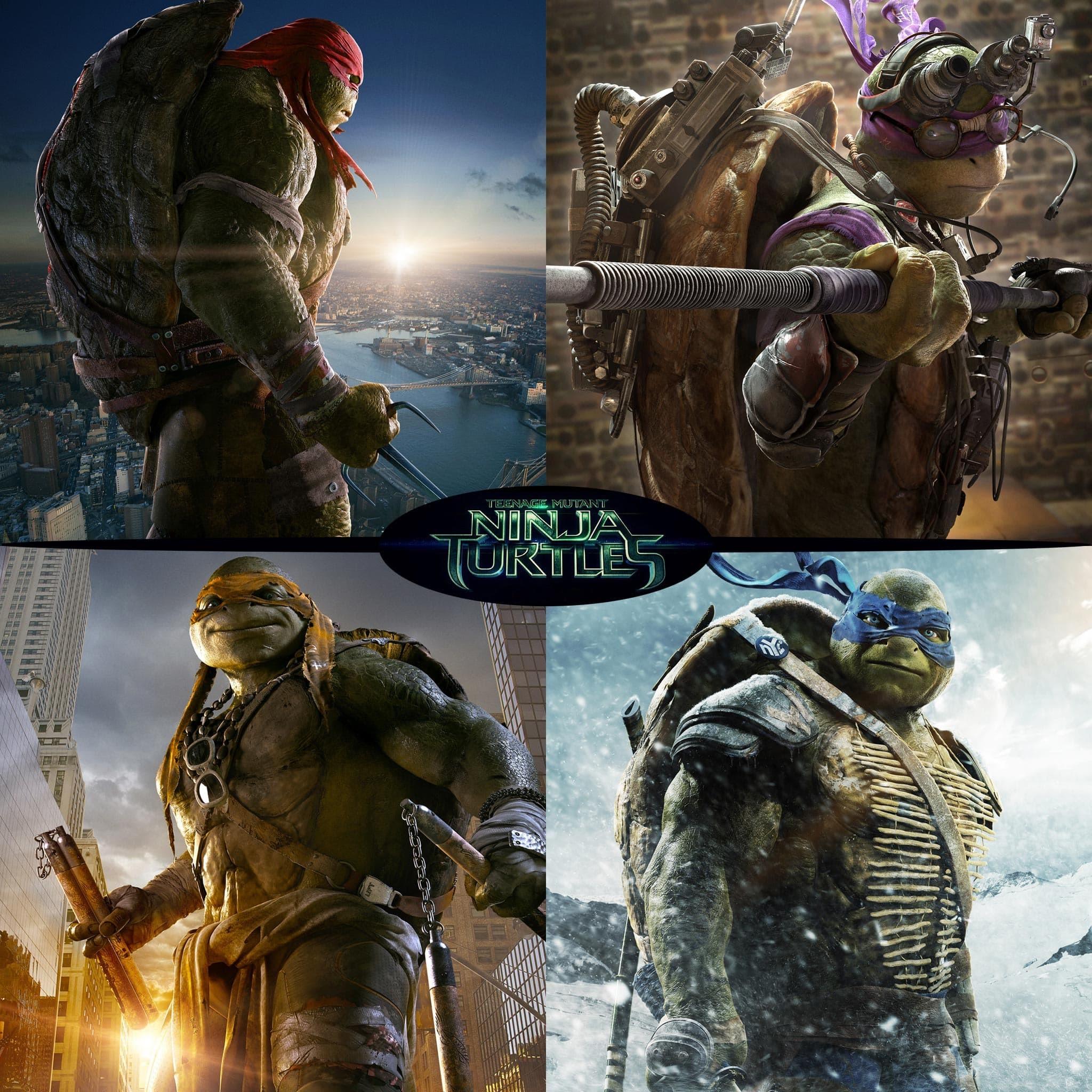 Teenage Mutant Ninja Turtles 2014 1371657 Hd Wallpaper