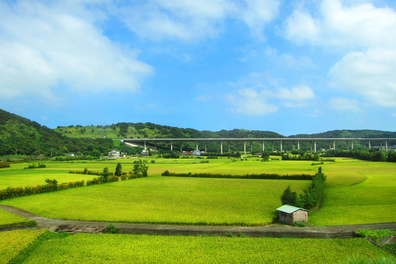 Sky Rural Paddy Fields Scenery Free Desktop Background - Botanical Garden , HD Wallpaper & Backgrounds