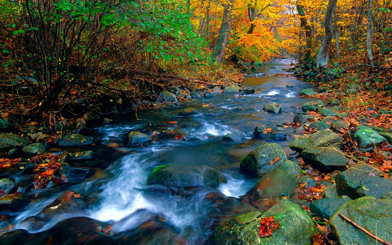 Hd Nature Wallpaper Download For Android Natural Scenery