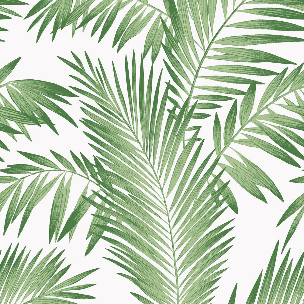 Tropical Palm Green Wallpaper Palm Leaves Aesthetic Background 140948 Hd Wallpaper Backgrounds Download Download the perfect tropical leaves pictures. tropical palm green wallpaper palm