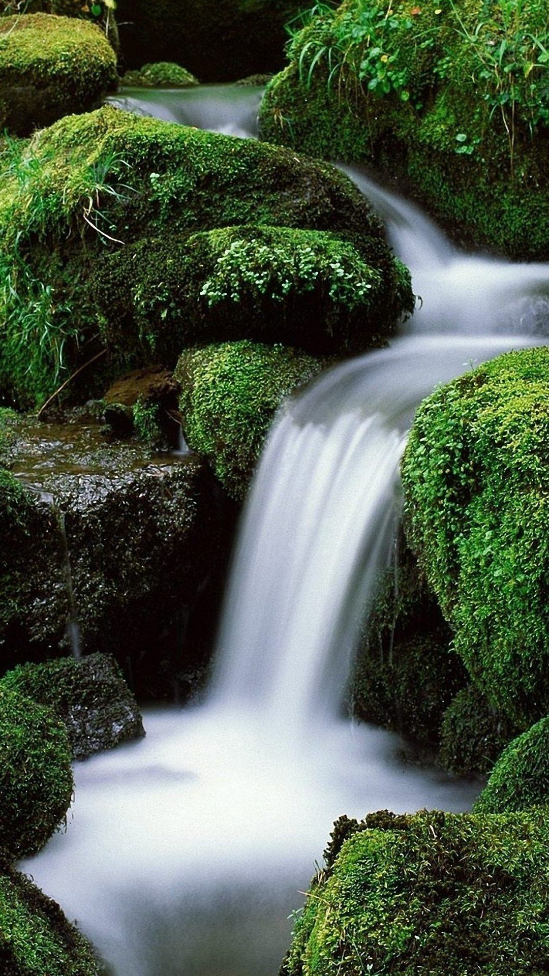 Waterfall Green Forest Iphone 6 Wallpapers Hd - Waterfall Gif , HD Wallpaper & Backgrounds