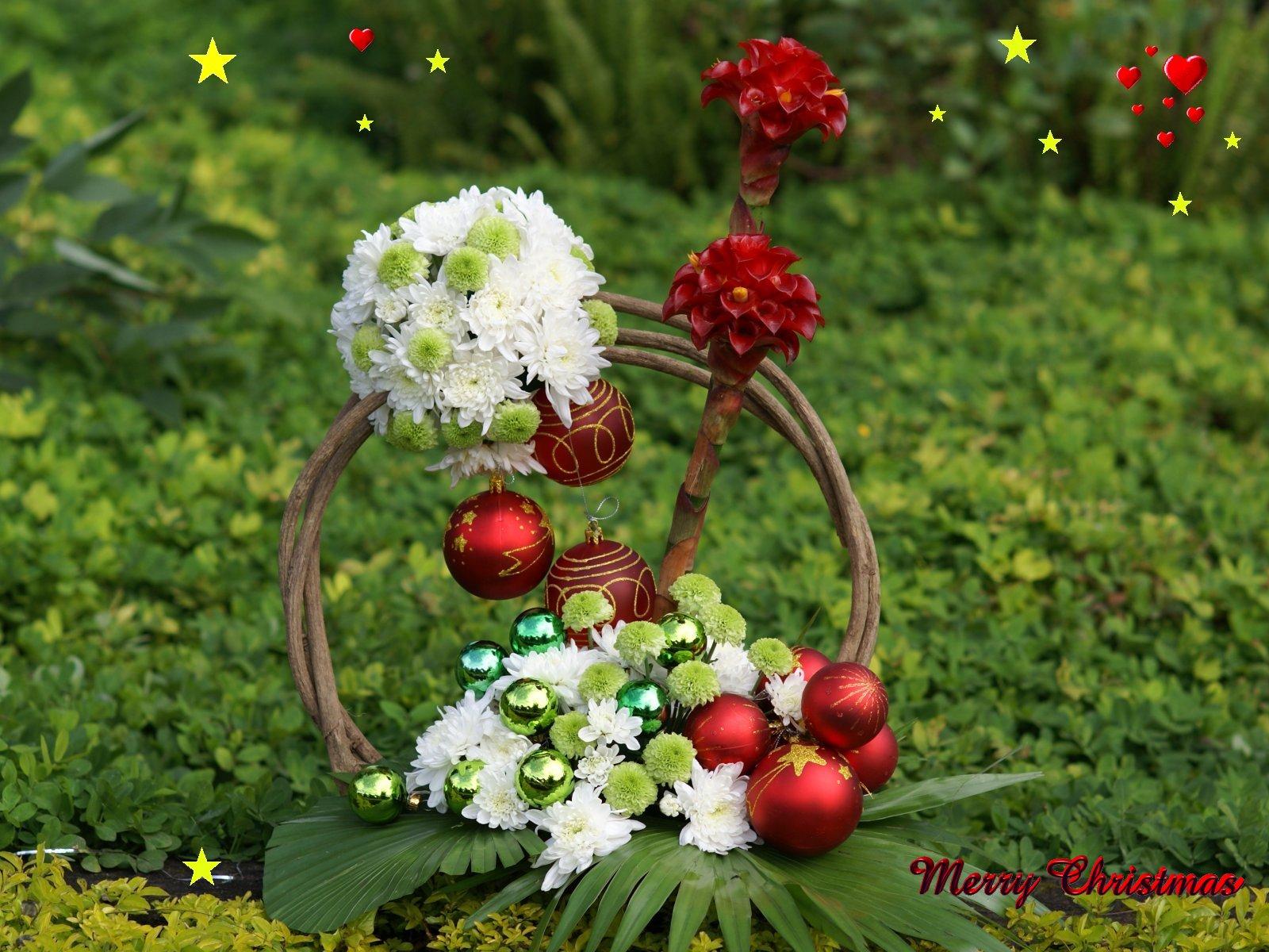 Christmas Flower Art Wp Dsc04704 A2 - Beauty Full Wall Paper , HD Wallpaper & Backgrounds