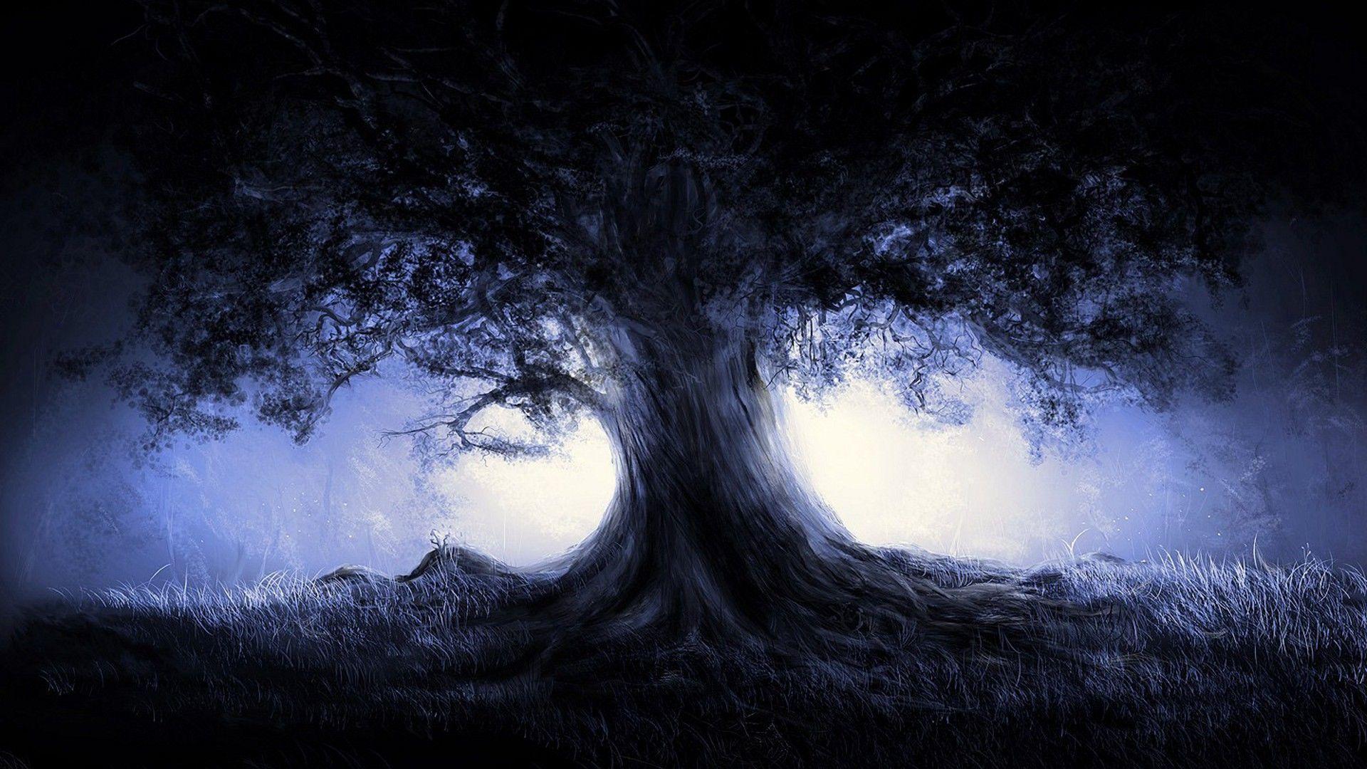 Tree In The Dark Forest Wallpaper - Dark Nature Cool Backgrounds , HD Wallpaper & Backgrounds