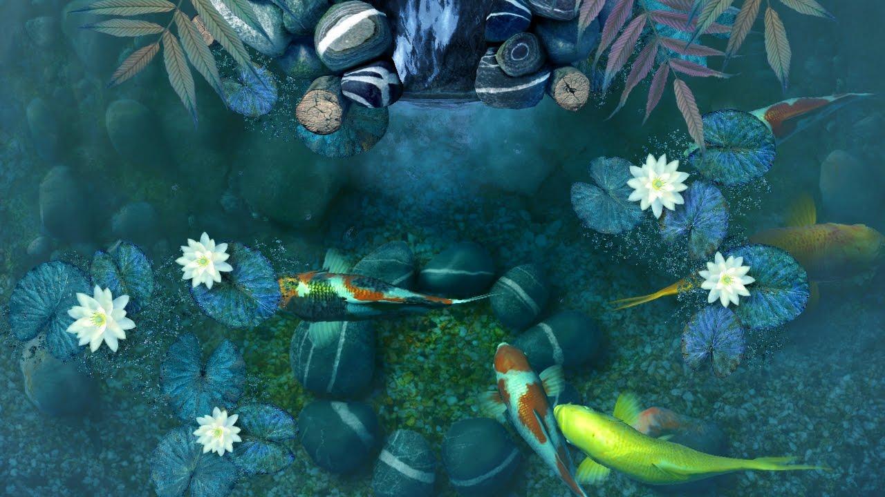#screensaverhd #screensaver #fish - Koi Pond Screensaver , HD Wallpaper & Backgrounds
