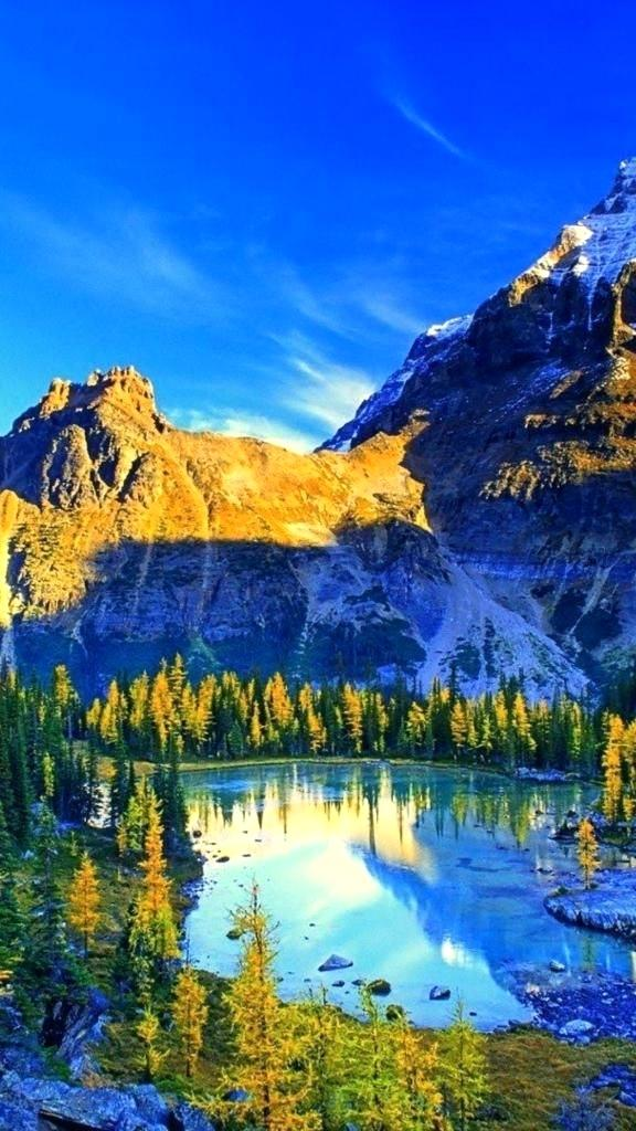 Nature 4k Ultra Hd Nature 147389 Hd Wallpaper Backgrounds Download