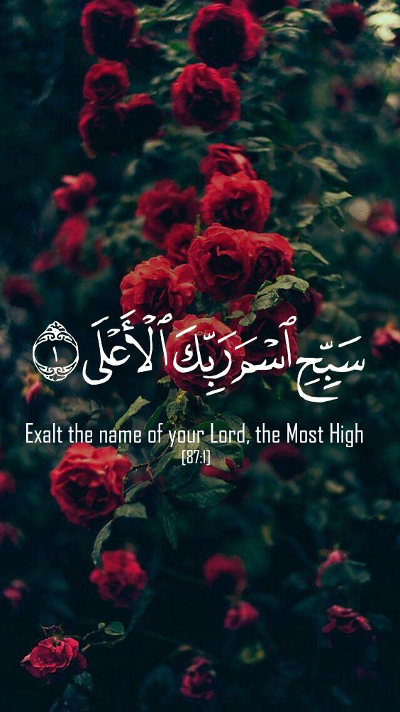 Islamic Wallpaper Iphone Iphone6 Quran قرآن Islam