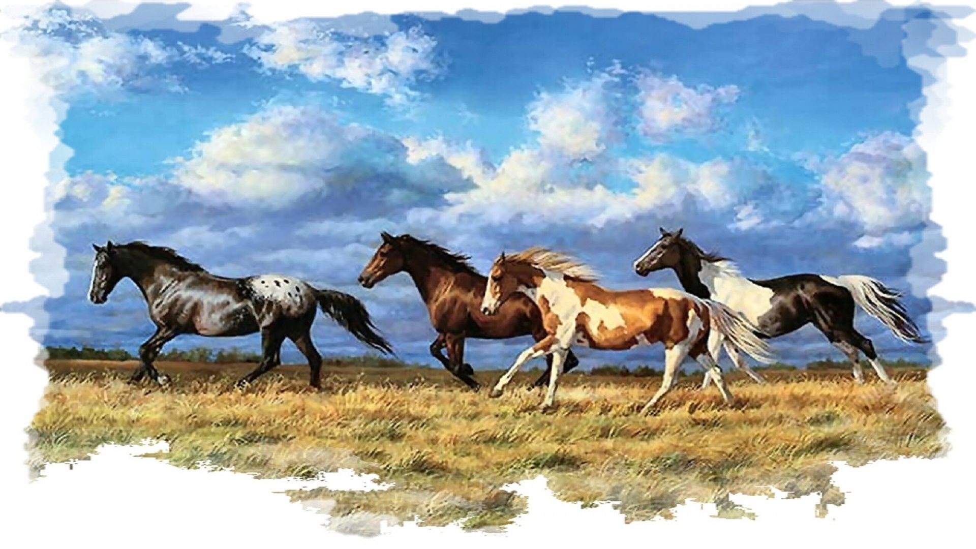 Seven Horse Hd Wallpaper 34 Find Hd Wallpapers For Running