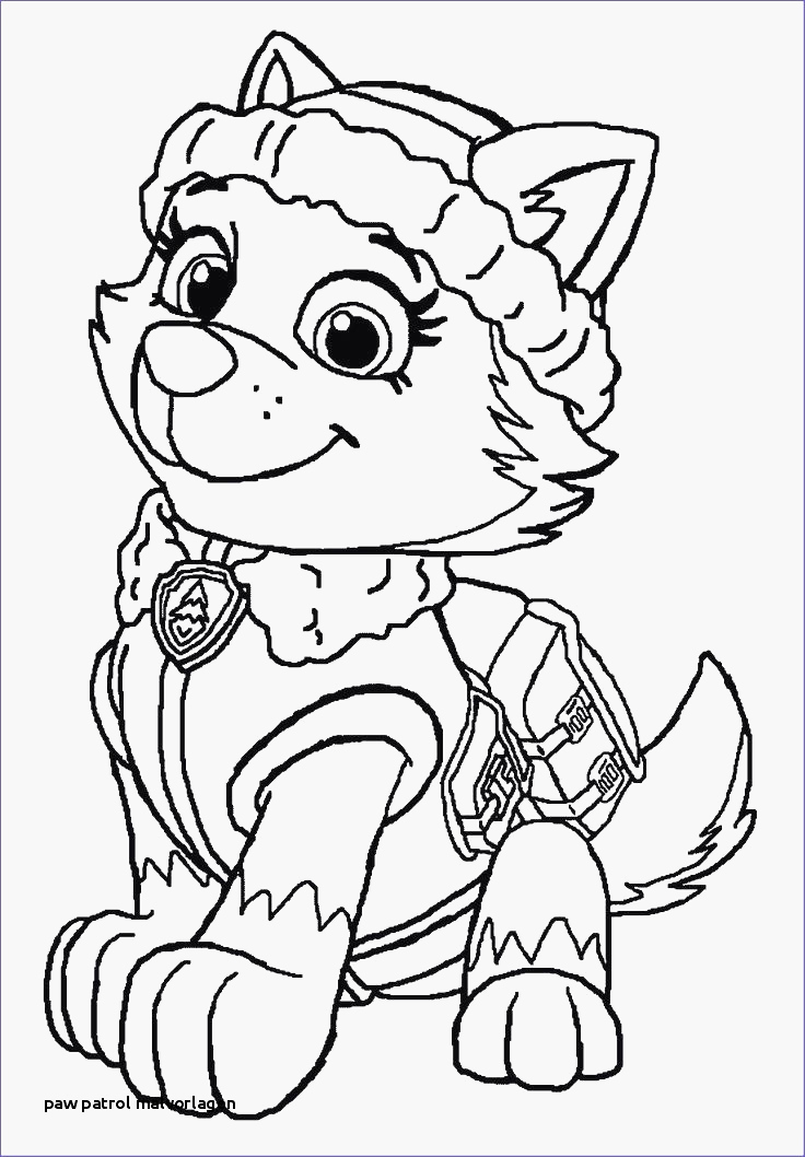 Paw Patrol Wallpaper Sommige 99 Frisch Ausmalbilder - Coloring Pages Paw Patrol Everest , HD Wallpaper & Backgrounds
