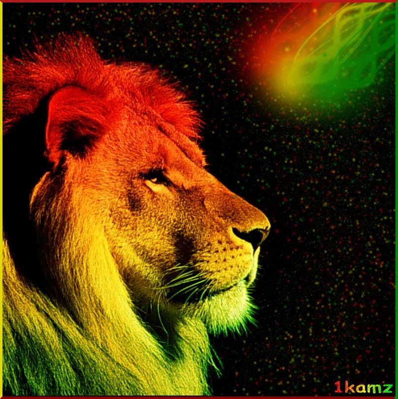 Rasta Images - Qygjxz - Lion In Indian Flag Colour , HD Wallpaper & Backgrounds