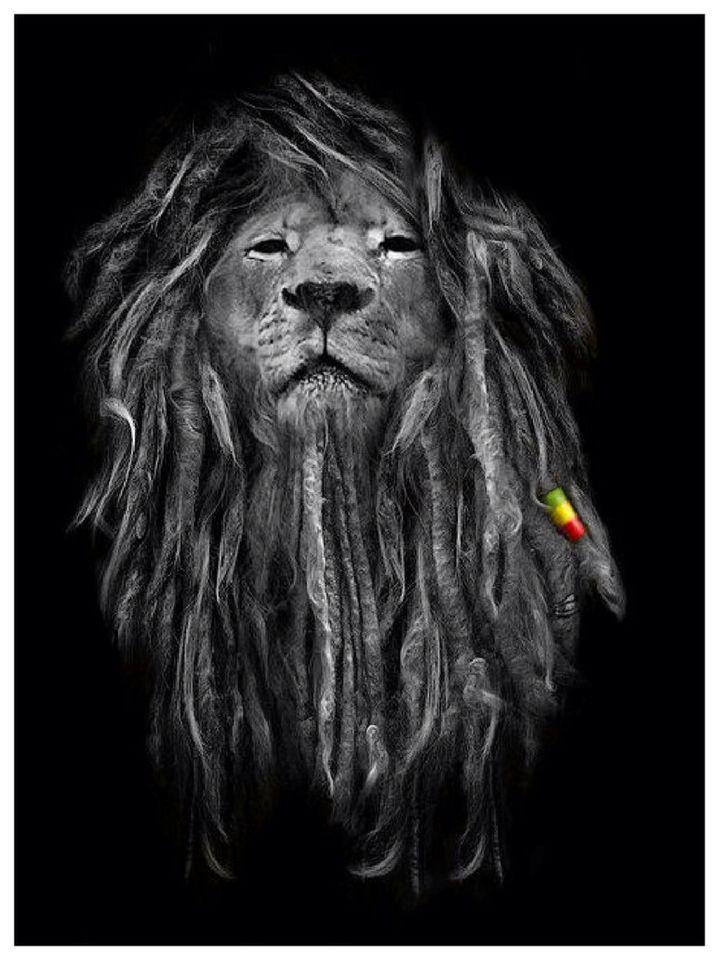 Rasta Lion - Black And White Rasta Lion , HD Wallpaper & Backgrounds