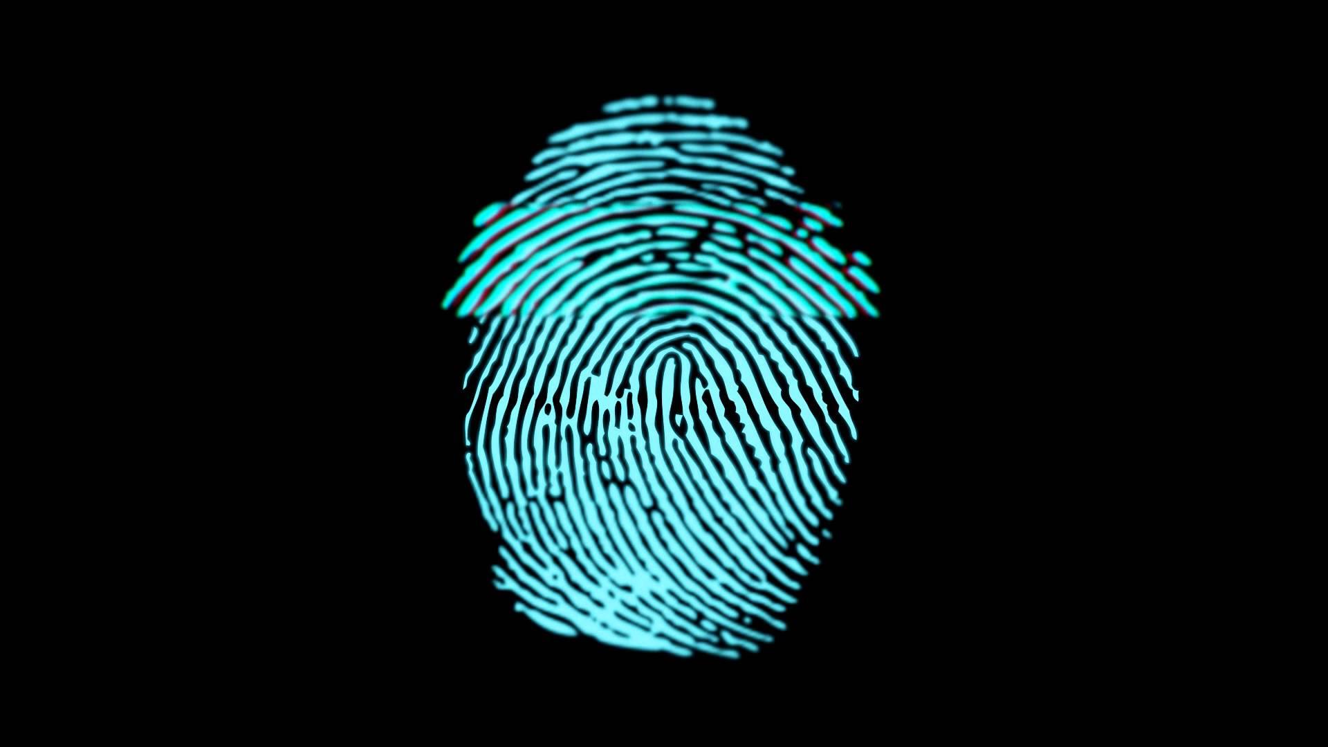 Fingerprint Scan - Animated Gif Fingerprint Gif , HD Wallpaper & Backgrounds