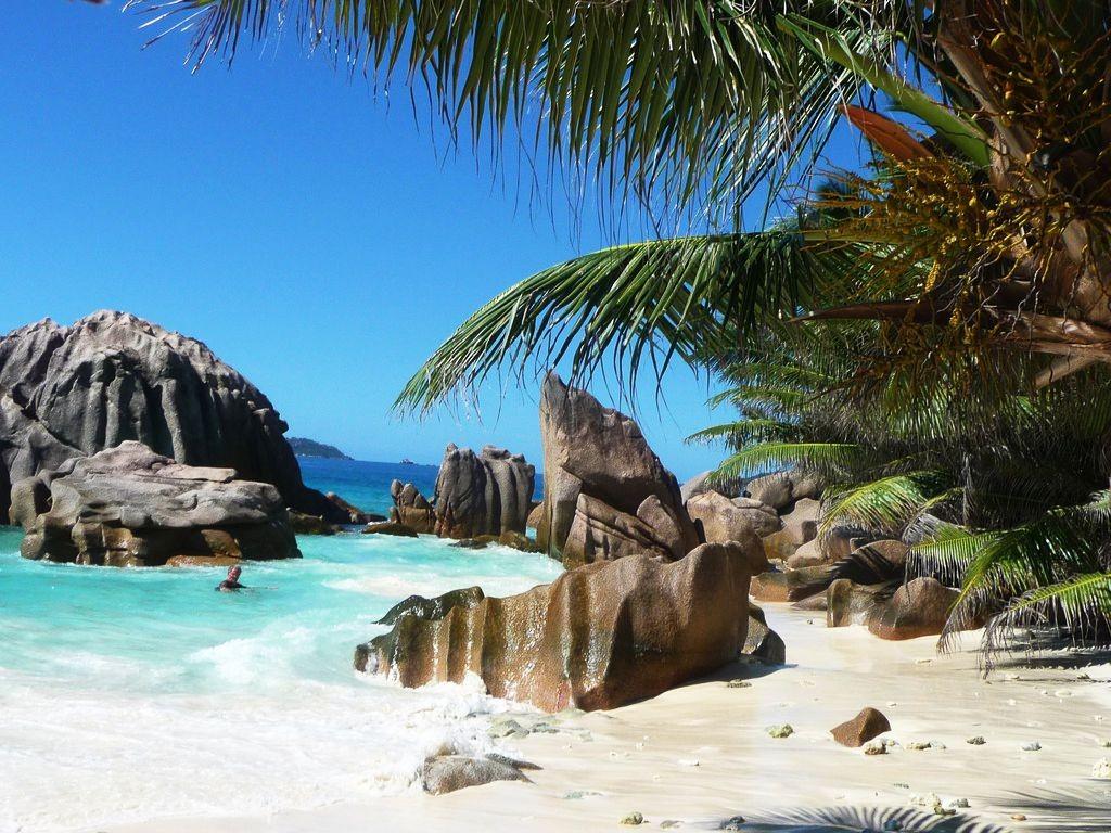 Nature Beach Sand Trees Corner Rocks Islands Seychelles