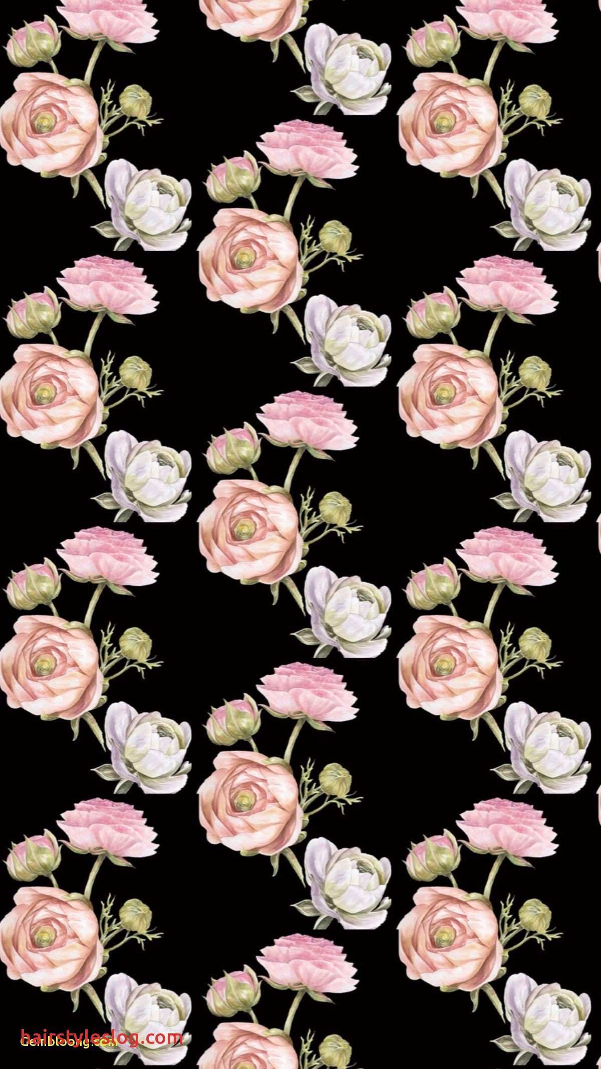 Aesthetic Black Wallpaper With Rose