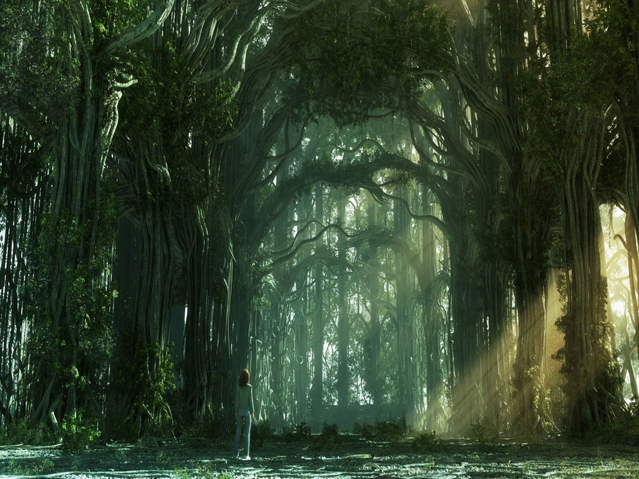https://www.itl.cat/pngfile/big/15-151834_forest-wallpaper-forest-background-fantasy.jpg