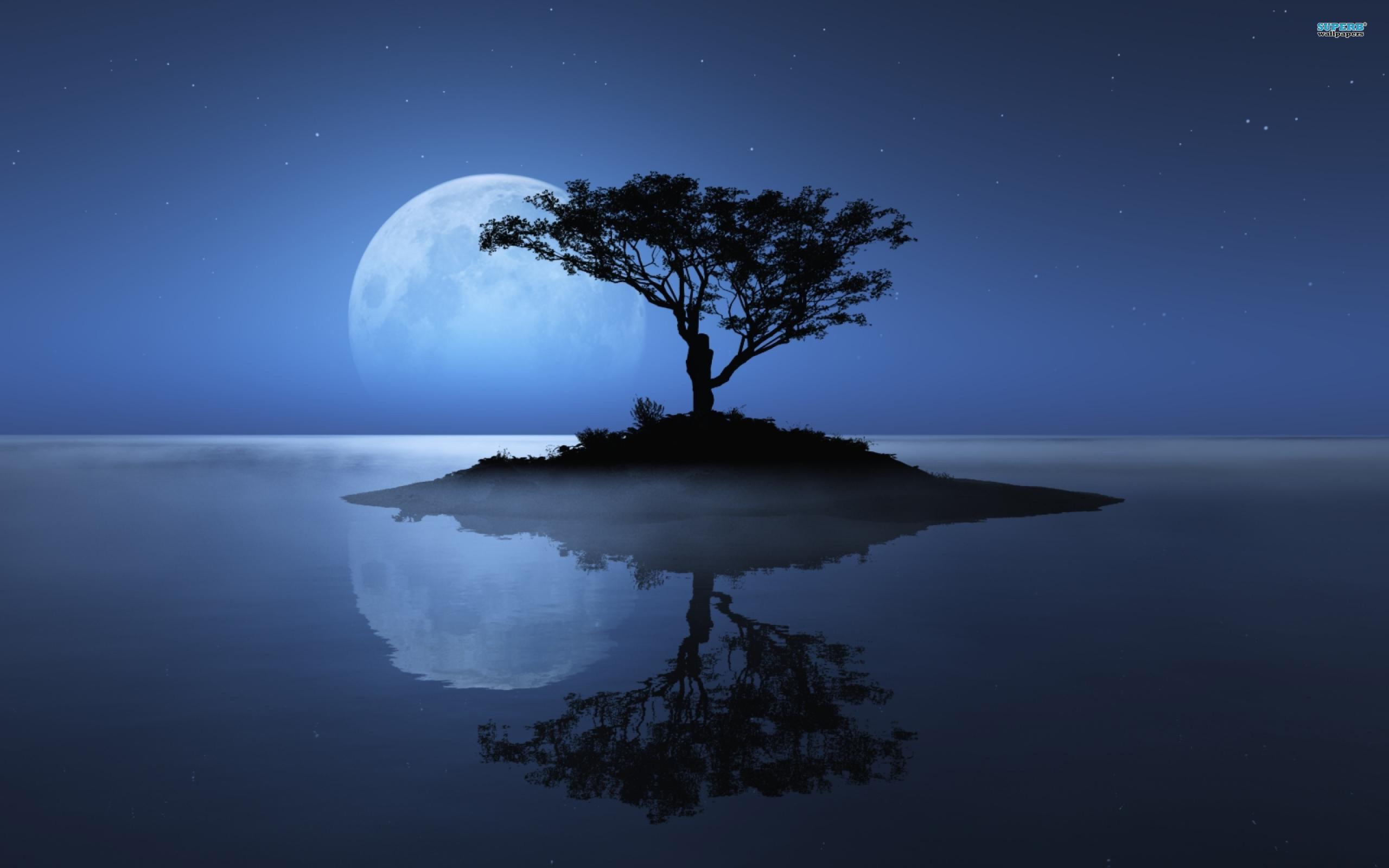 Small Island Sky Moon Wallpaper Hd - Tree And Moon Background , HD Wallpaper & Backgrounds