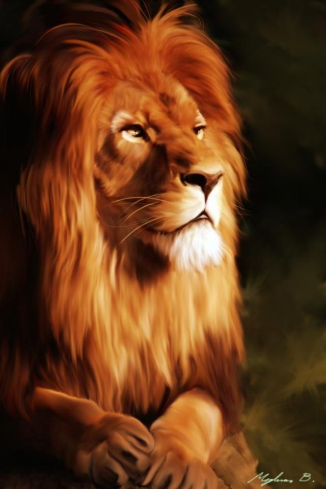 Lion - Mobile Animal Wallpaper Hd , HD Wallpaper & Backgrounds