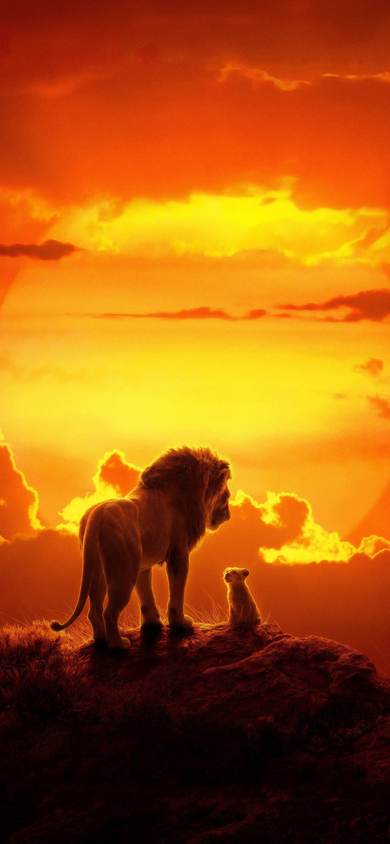 Lion King Wallpaper 2019 , HD Wallpaper & Backgrounds