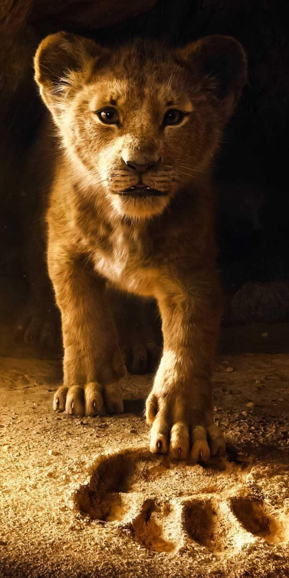 The Lion King Iphone Wallpaper - Lion King 2019 Wallpaper Iphone , HD Wallpaper & Backgrounds