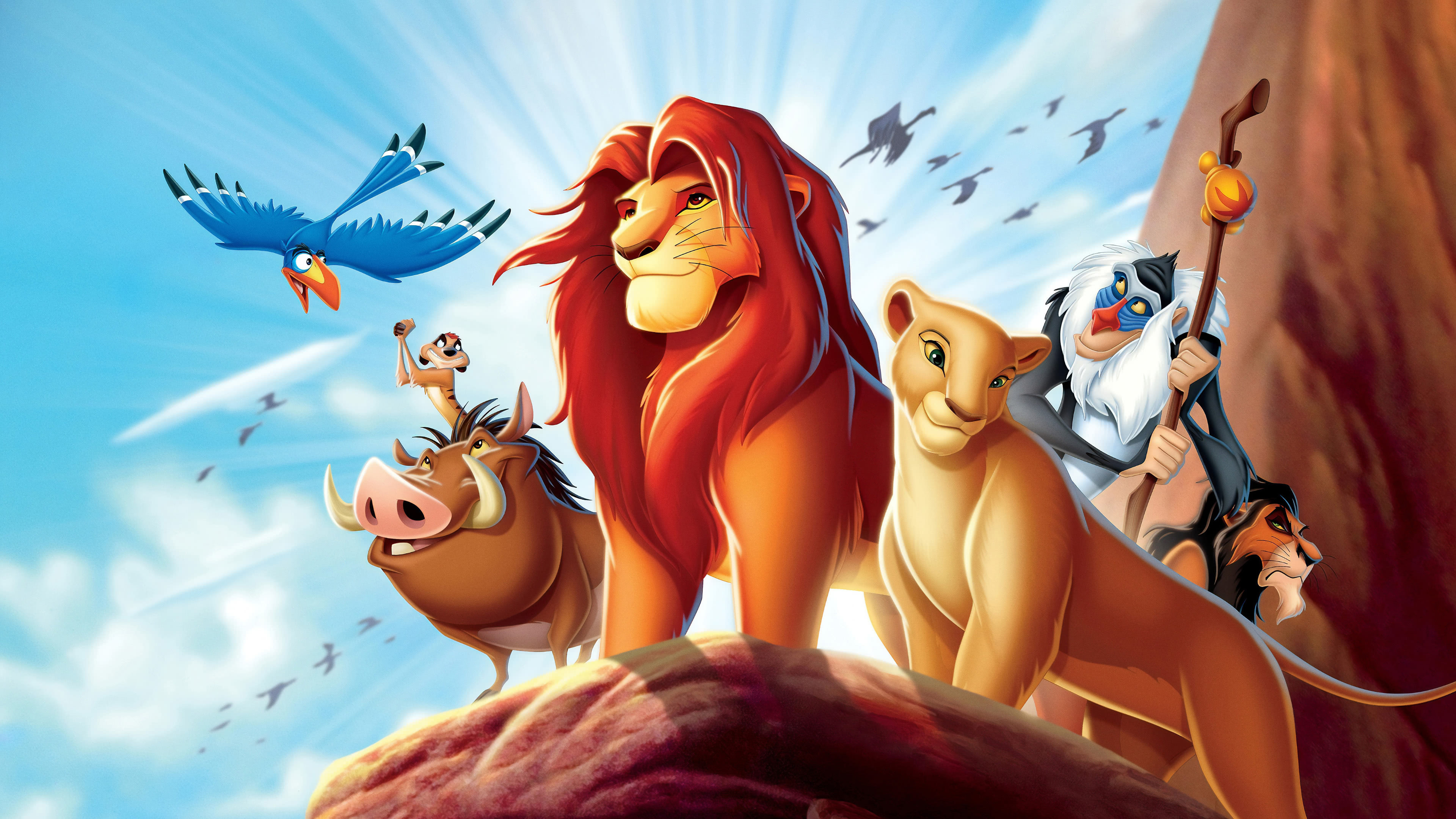 Categories - Disney's Lion King , HD Wallpaper & Backgrounds