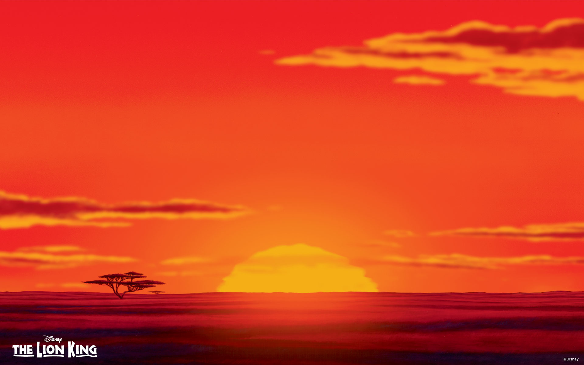 The Lion King Wallpaper - Lion King Background Hd , HD Wallpaper & Backgrounds
