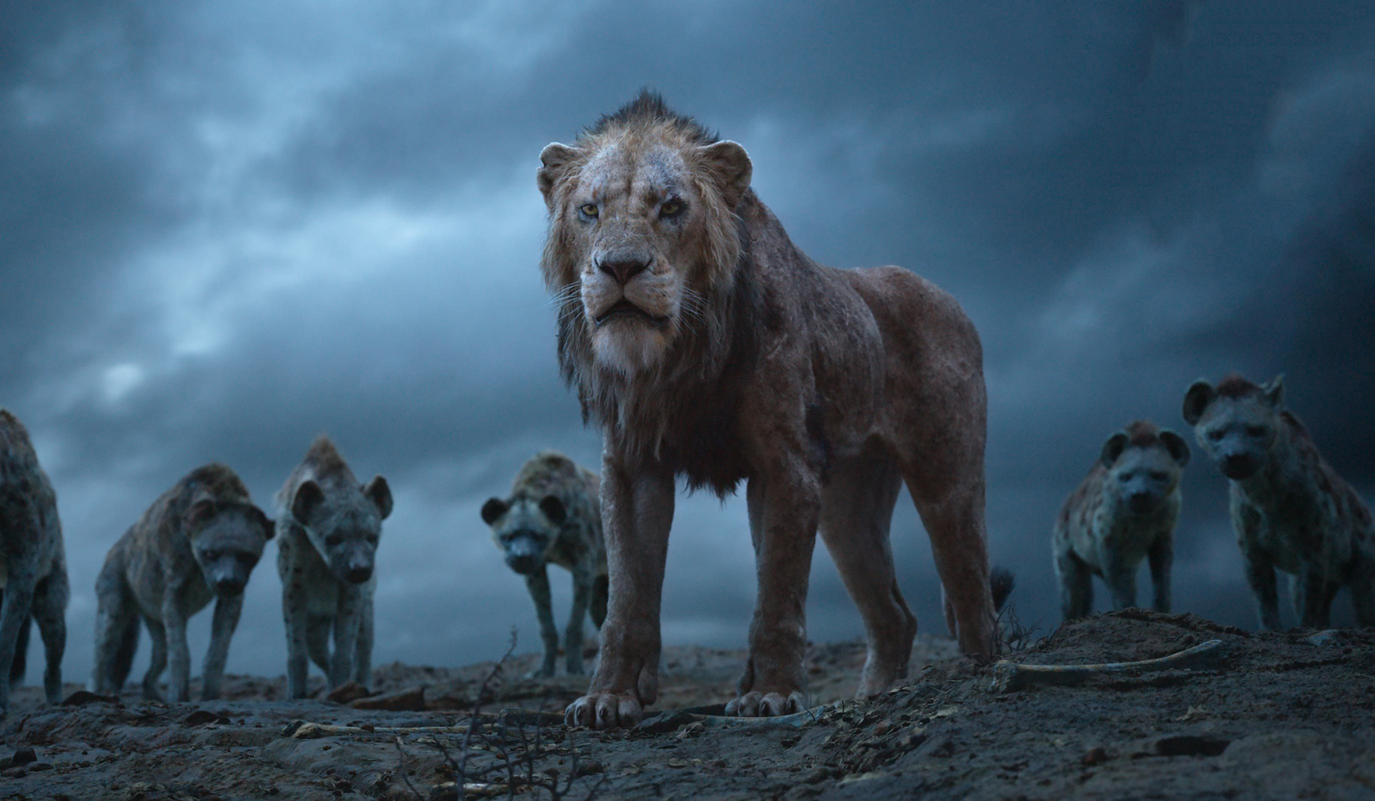 Scar The Lion King - Lion King 2019 Hyenas , HD Wallpaper & Backgrounds