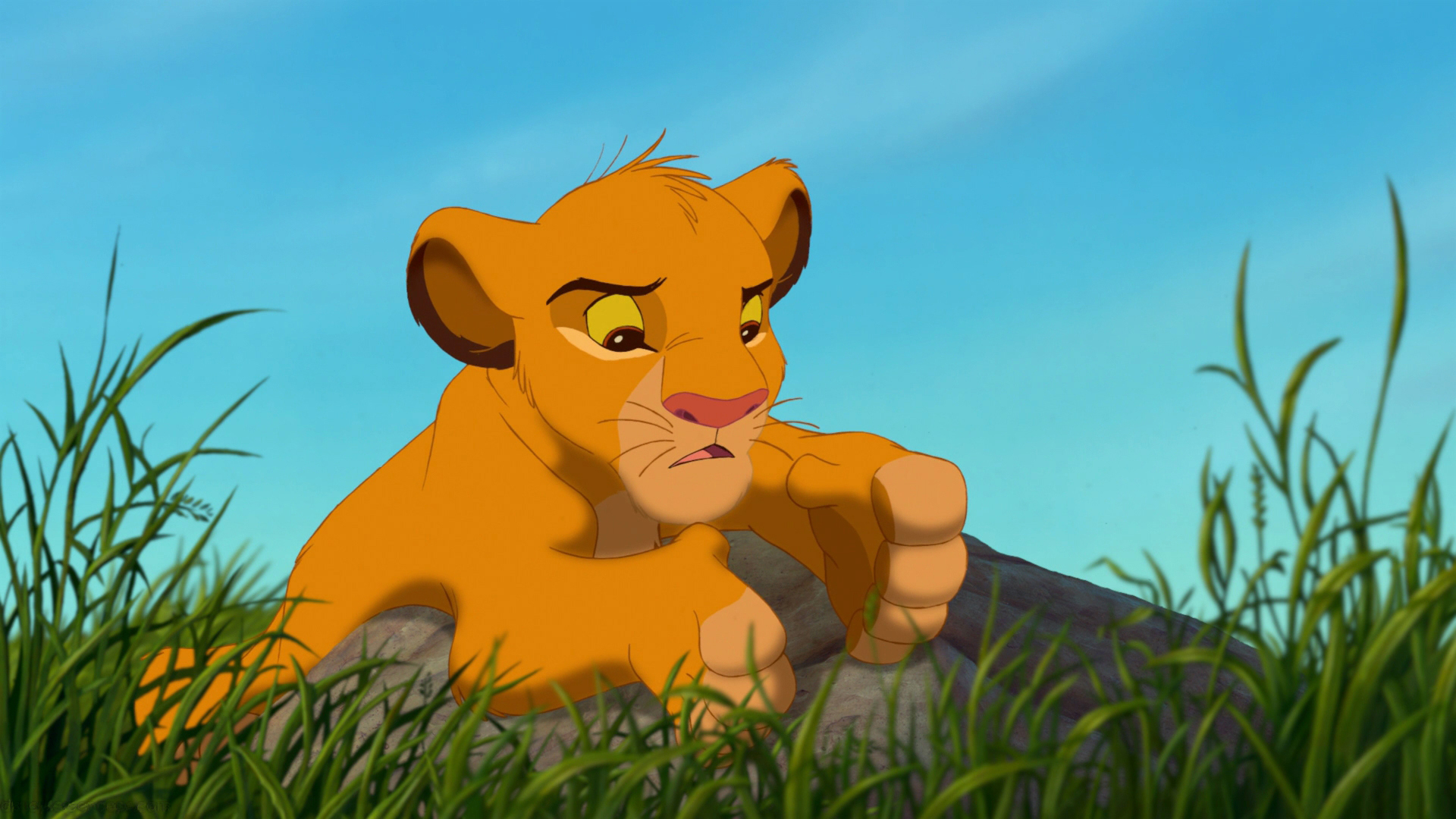 The Lion King Cartoon Adventures Of The Young Lion - Cartoon Simba The Lion King , HD Wallpaper & Backgrounds