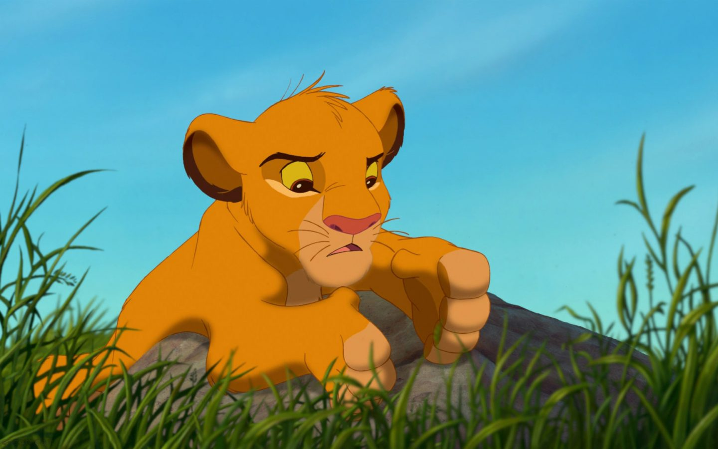 Cartoon Simba The Lion King , HD Wallpaper & Backgrounds