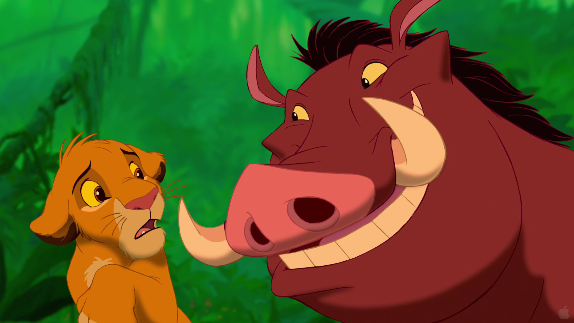 The Lion King - Pumba And Simba , HD Wallpaper & Backgrounds